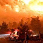 Enorme incendio in Grecia: le fiamme divorano le case a Schino, centinaia di evacuati [FOTO]