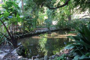 laghetto orto botanico messina