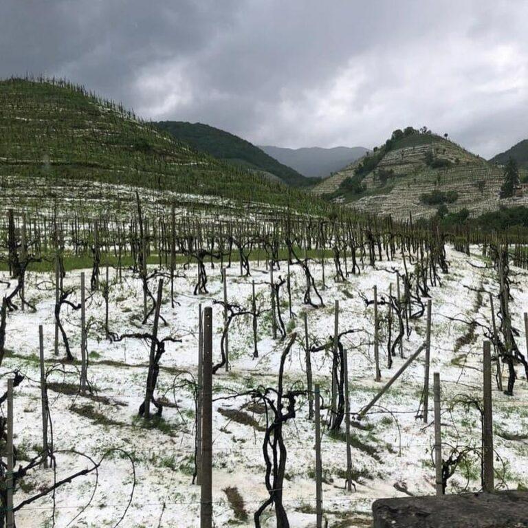Zona Vidor-Colbertaldo-Mosnigo