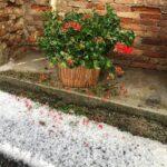 Maltempo Piemonte, violento temporale tra Astigiano e Alessandrino: furiosa grandinata a Viarigi, strade imbiancate [FOTO]
