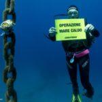 Clima, mare sempre più caldo e perdita di biodiversità: si amplia la rete per monitorare i mari italiani [FOTO]
