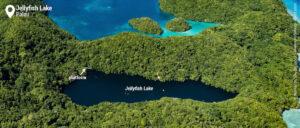 posizione jellyfish lake
