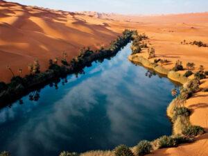 sahara oasi