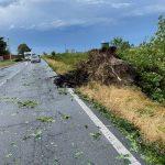 Novara devastata dal maltempo: downburst distrugge un supermercato, tetti divelti e disagi [FOTO & VIDEO]