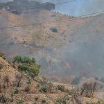 Caldo anomalo, Reggio Calabria assediata dagli incendi: rogo divampa a Pentimele, le fiamme avanzano [FOTO e VIDEO]