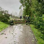 Maltempo, nubifragio e allagamenti a Bolzano: forte downburst nell'Alto Garda, tetti divelti e alberi spezzati – FOTO e VIDEO
