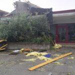 Maltempo in Veneto, forte vento tra Vicentino e Padovano: raffiche fino a 85km/h, abbattute due gru, strage di alberi a Vicenza – FOTO