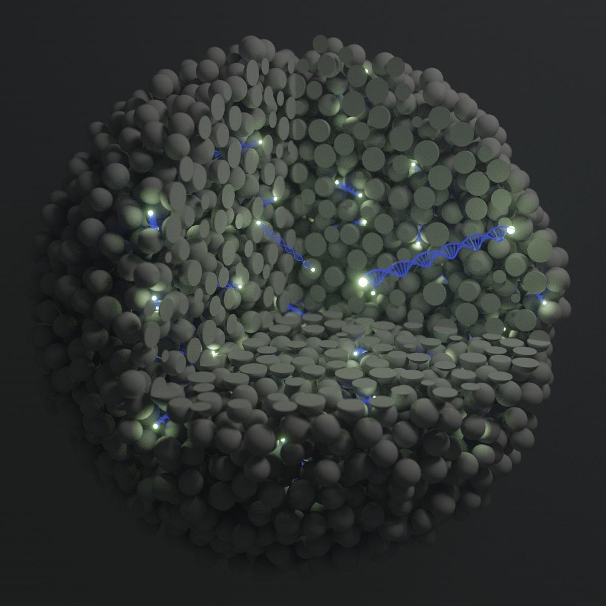 nanosonde