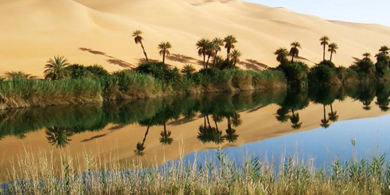 oasi farafra