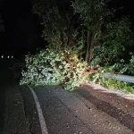 Maltempo Lombardia, grandine e blackout in Val Seriana: danni tra Ardesio e Castione della Presolana [FOTO]