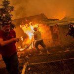 """Continua la lotta contro gli incendi ad Evia, la Grecia """"sta affrontando un disastro naturale senza precedenti"""" [FOTO]"""