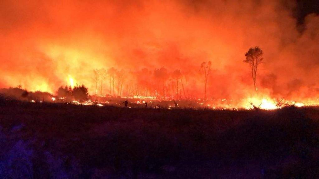 incendio pineta isola capo rizzuto