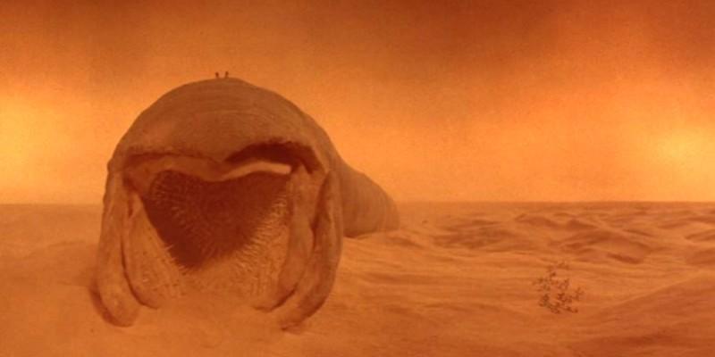 dune-verme